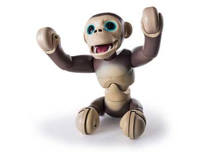 Zoomer– Chimp