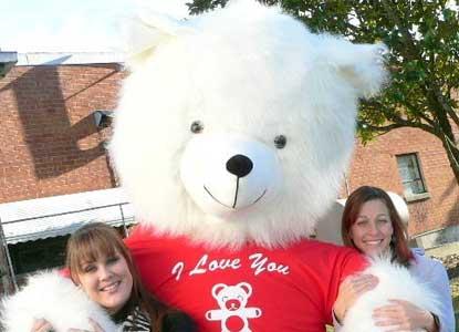 Polar Bear with Red Shirt