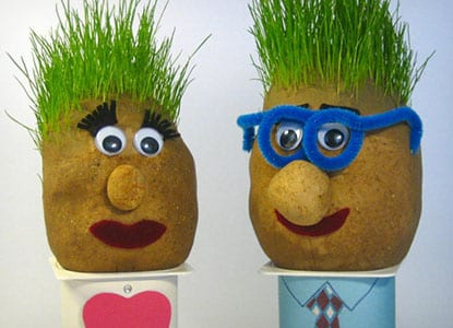 Diy Make Your Own Grass Heads