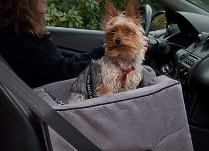 Pet Gear Lookout Booster Car Seat