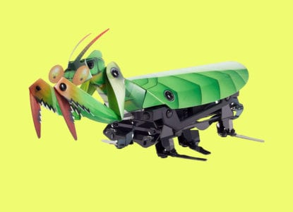 Bug Toys For Insect Lovers